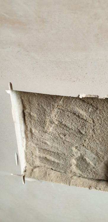 Plaster removed to show damp proofing.jpg