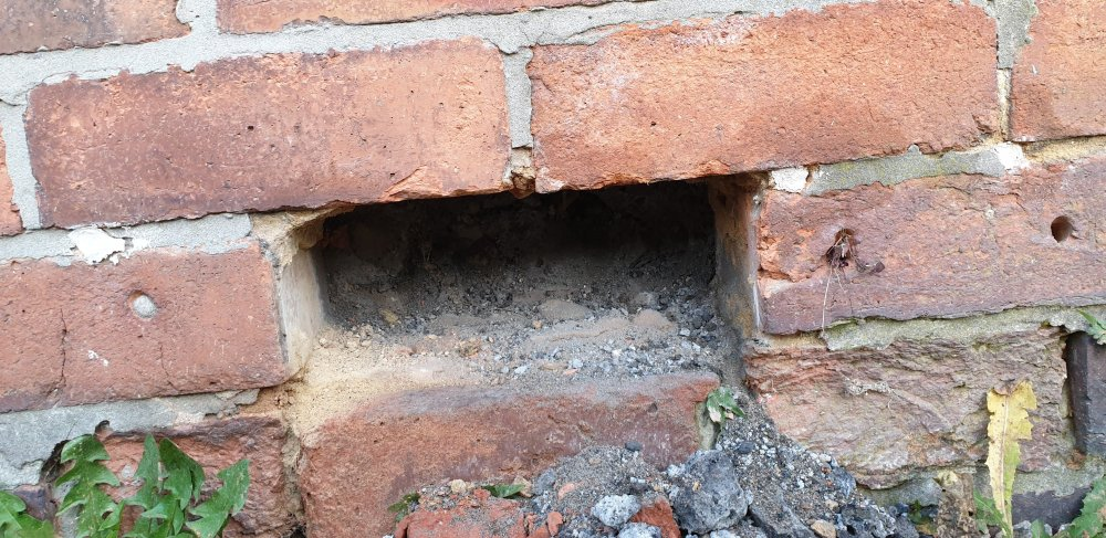 Brick removed to show damp course.jpg